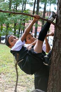 The twins climb a little higher