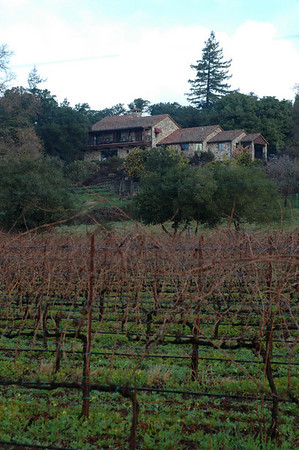 2009/10 New Years in Sonoma