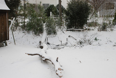 2009-03-02-Snow 021