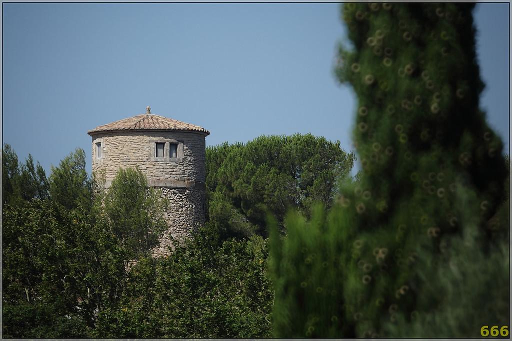 IMAGE: http://photos.corbi.eu/Family/2010-07-24-Laira-vistite-les/IMG2452NW/950261287_gqPTW-XL.jpg