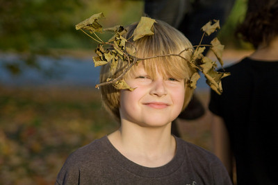 Leaf antlers