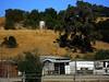 Calero Ranch 0010