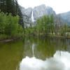 Yosemite Falls from that same bridge.