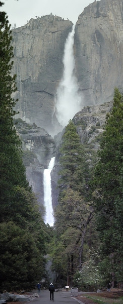 Yosemite Falls.  To get this view, I had to take three pictures and stitch them together.  The camera just doesn't take a wide enough view.