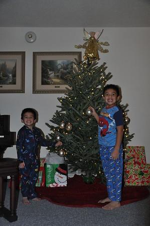 2010-12-05 Christmas Tree Set Up