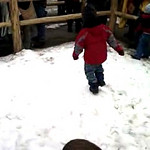 Nate running in circles at the hardware ranch.