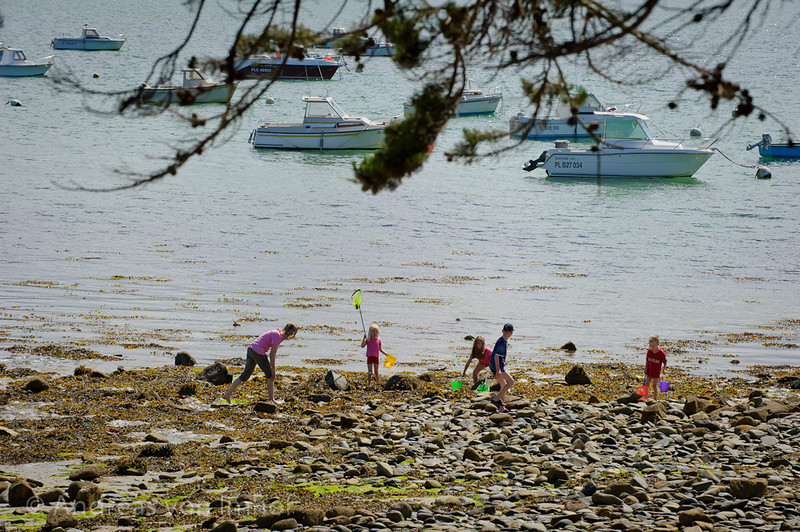 The view from our veranda.In no time the kids we busy catching crabs, shrimps and fish.