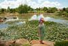 Japanes Gardens in Dubbo.