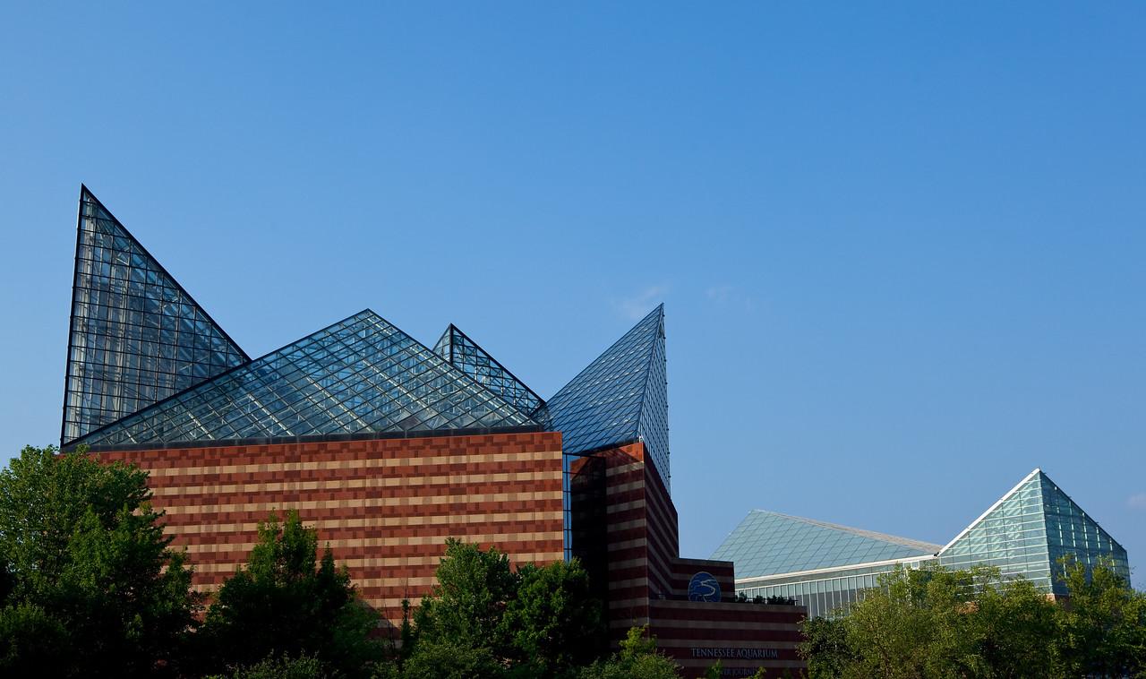 Tennessee Aquarium  Chattanooga, TN