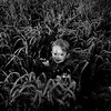 Hunter in a field of wheat