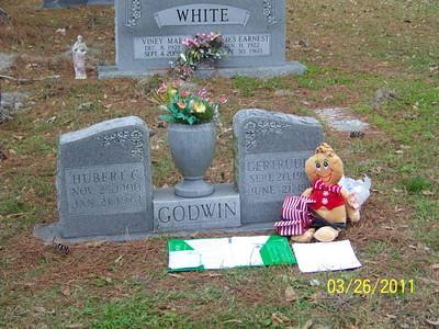 Gertrude & Hubert Godwin are Ginny's parents.