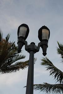 Turtle lights...