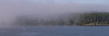 Foggy morning, Anacortes, WA (from ferry)