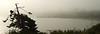 Ferry Dock, Anacortes, WA