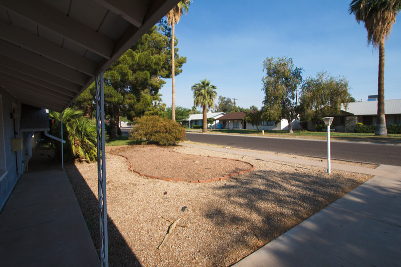 Front yard of Paul and Faith's home in Phoenix, Arizona - May 2012