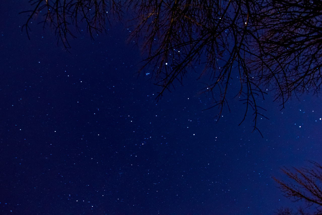 We have a lot of stars, too.