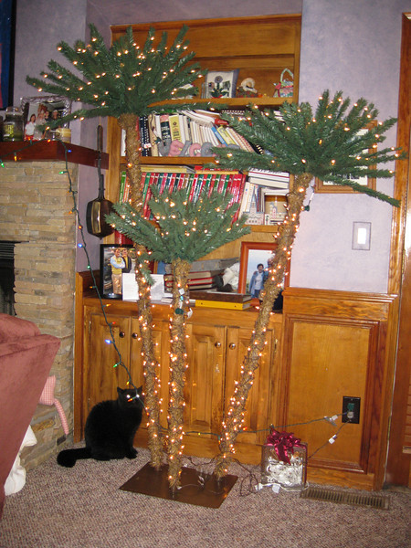 "Spooky & The ""FU"" Tree From The Wansleys At Russell & Ann's Highland Pointe Home November 2011"