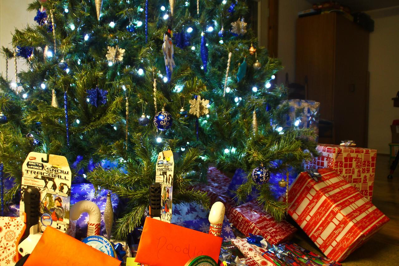 christmas_2011-9