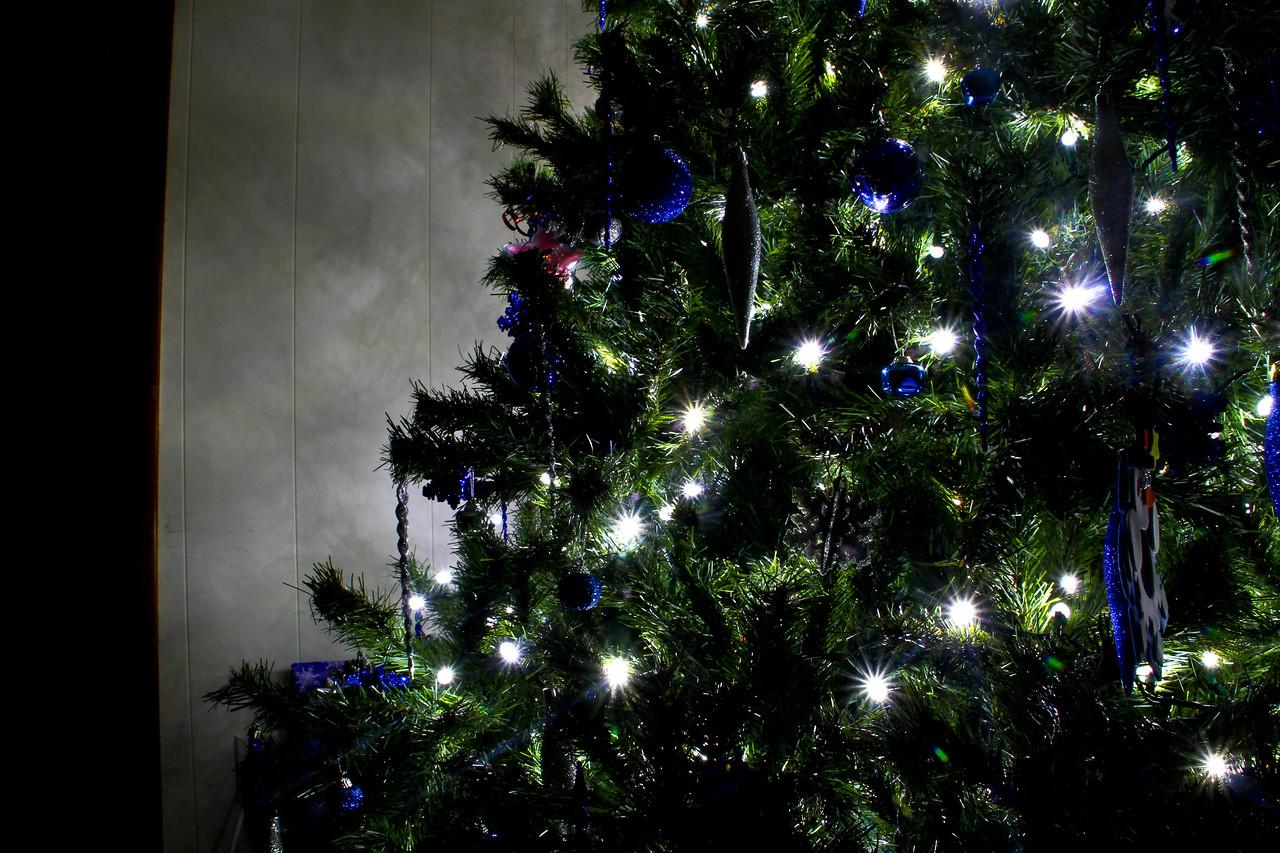 christmas_2011-19