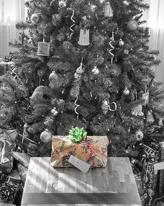 Christmas 2011 DC