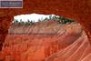 Bryce Canyon Park 0351