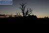 Arches Park Sunrise 0239