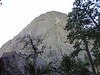 Devil's Tower-00372