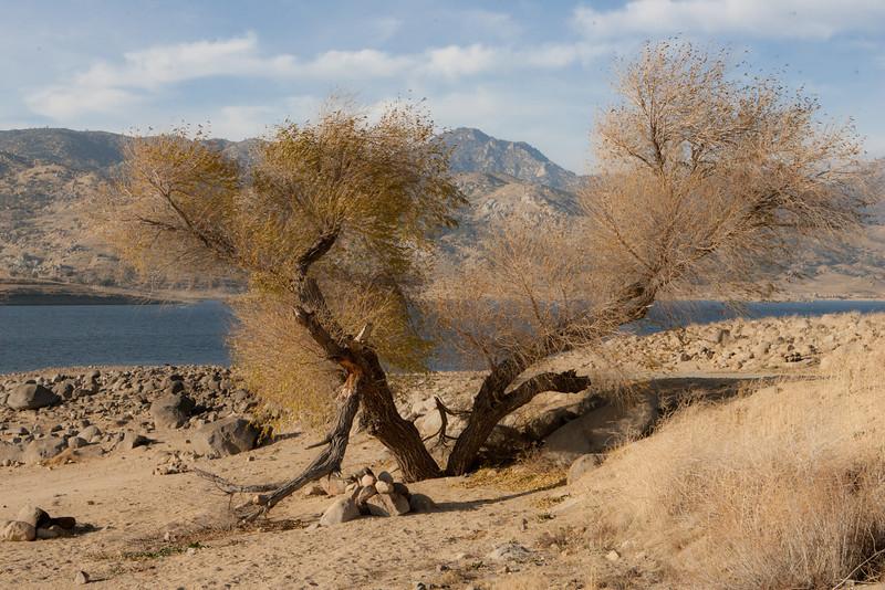Lake Isabella-0964