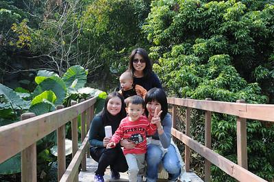 大棠荔枝山莊 2011/02