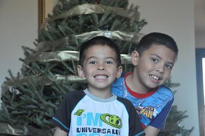 2011-12-04 Christmas Tree Setup