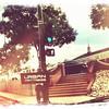 Photo1 (4)