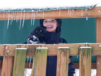 K.C. takes an opportunity to chomp on an icicle.