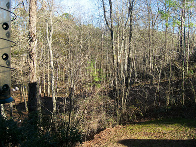 Side yard from deck