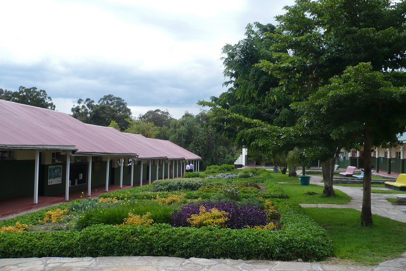Senior school classrooms with new plants and trees