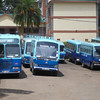 Rusinga School - a huge fleet of buses