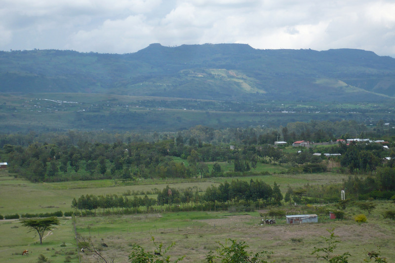 Kajuwere, as viewed from the art room