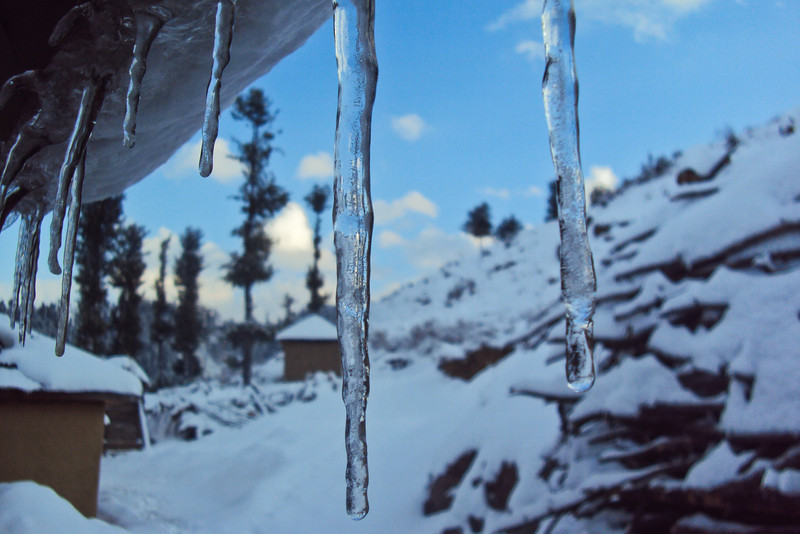 Dad got this awesome picture of icicles in the morning