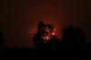 nov_2011_part2_fireworks_1