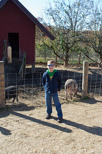 K.C. poses in front of the pigs.