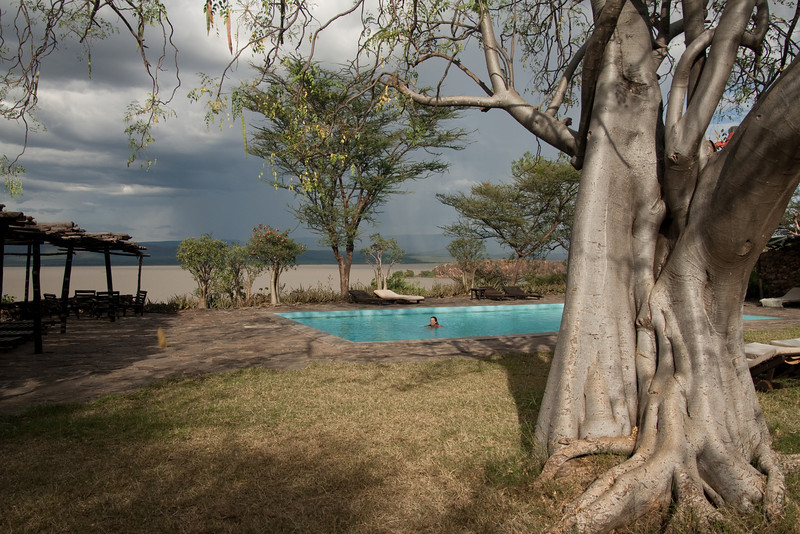 Erin enjoying the pool at Island Camp, Lake Baringo, with the same tree on the right