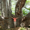 There were giant baobab trees everywhere
