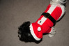 20121225_Christmas_021_out