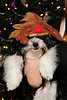 20121225_Christmas_009_out