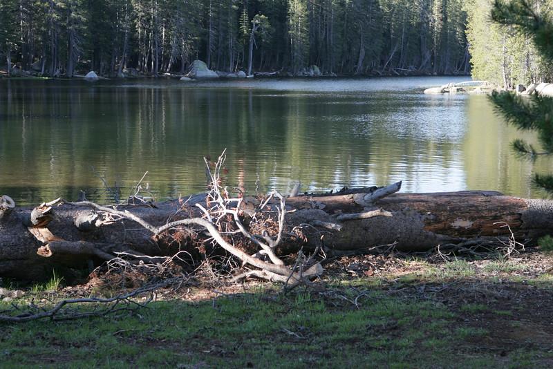 Sierra Summit-2229