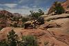 Zion Park Hike-2336