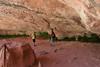Zion Park Hike-2330