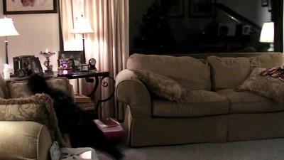 2012-10-13 Dylan Christmas Dance