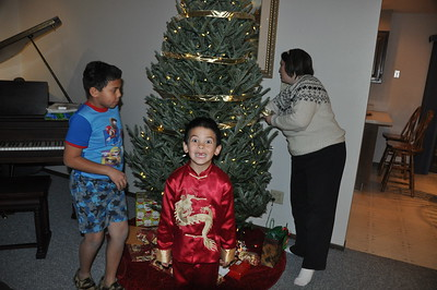 2012-12-16 Setting up the Christmas Tree