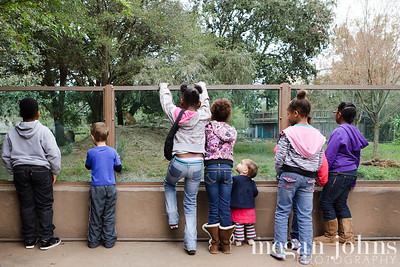 12-07-2012 Fun morning at the zoo!  I love the perspective of this image! More zoo shots  here.