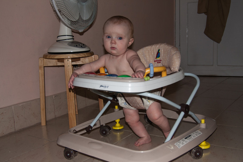 Sienna really likes her new walker